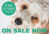 MyOodle 2014 Dog Calendar